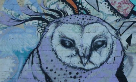HPCU owl