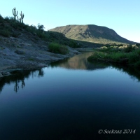 Agua Fria River morning....
