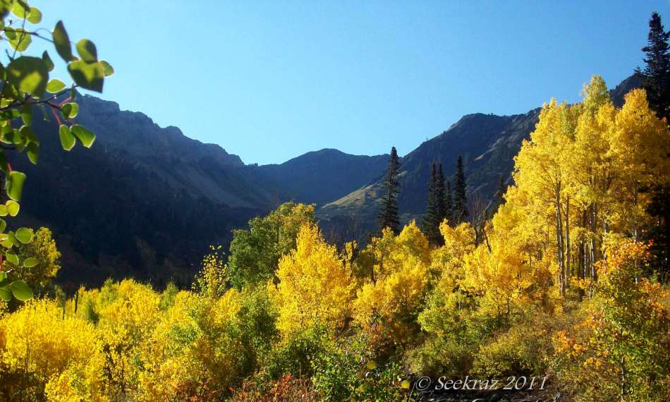 Mineral Fork Trail in Fall Glory, October 2011