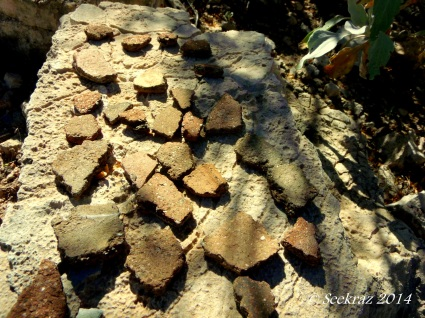 Pottery shards at Indian Mesa ruins