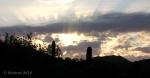 Sonora Desert sunrise