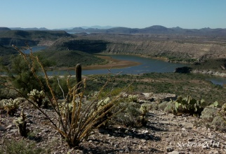 South view from Indian Mesa ruins overlooking Agua Fria River inlet to Lake Pleasant