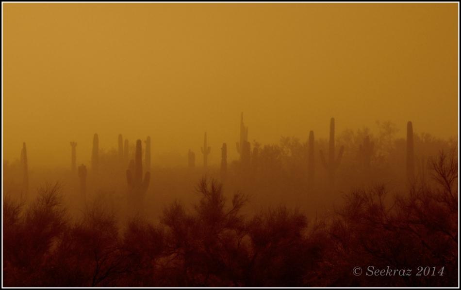 apocalyptic desert