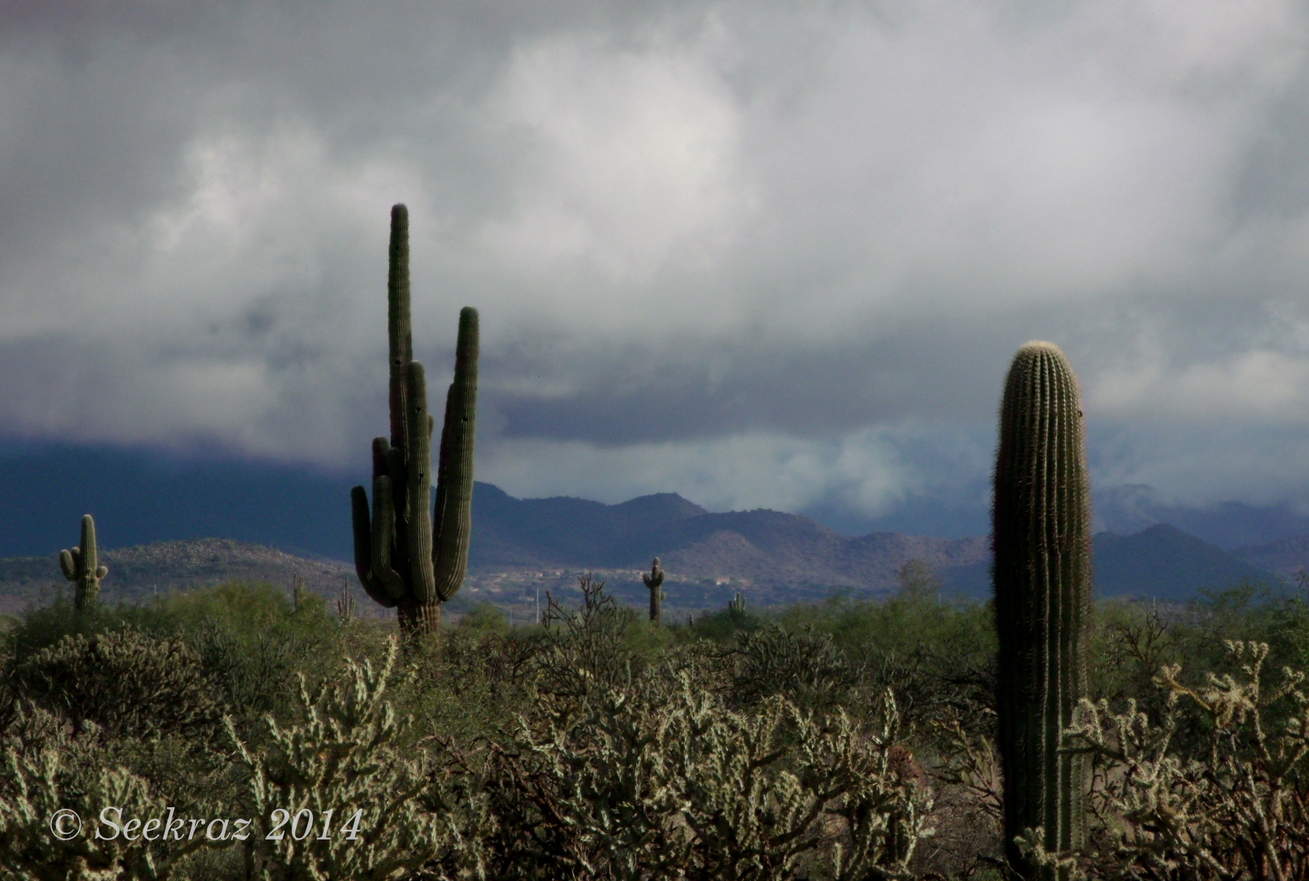 romantic places cactus clouds - photo #6