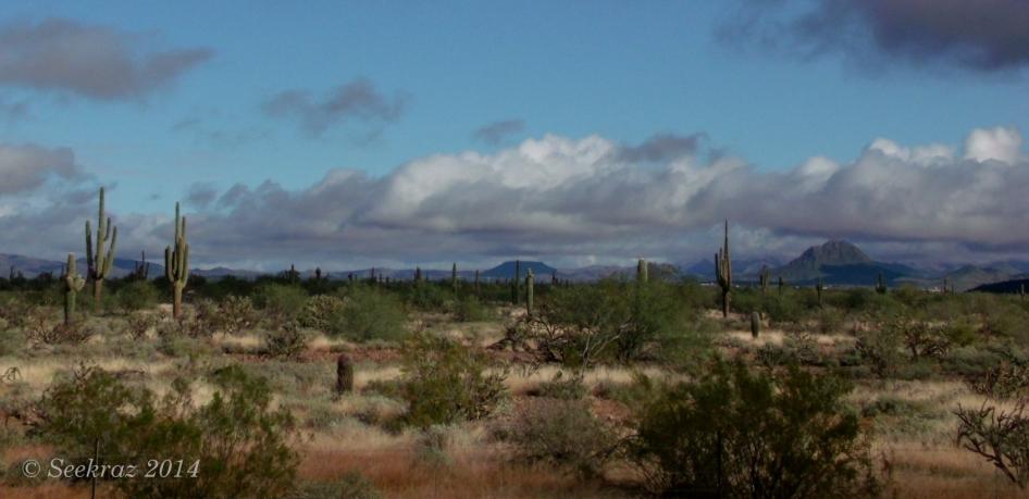 Cloudy desert panorama