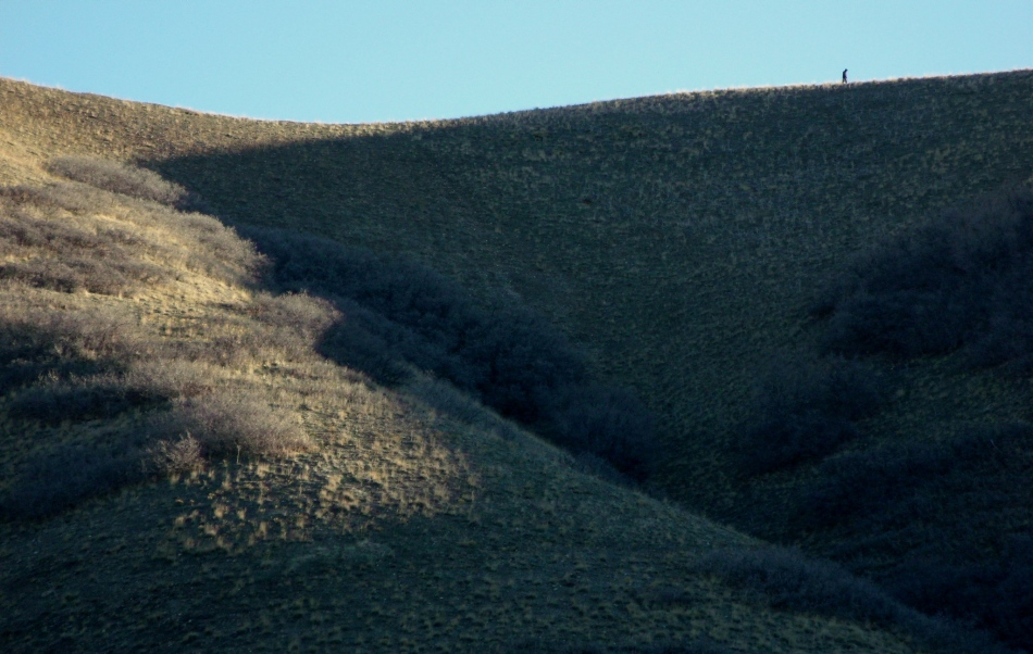lone hiker on hills above City Creek Canyon