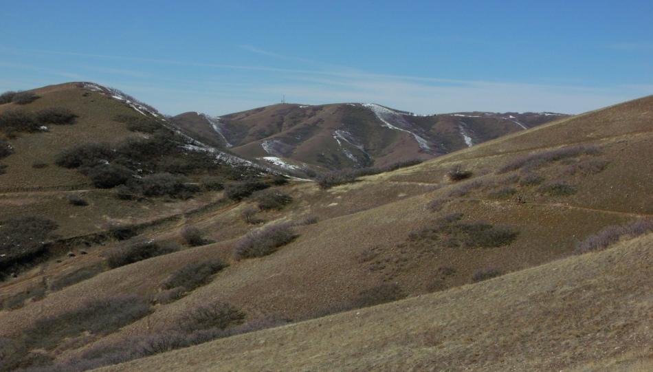 single hiker going west on Bonneville Shoreline trail north of Salt Lake City
