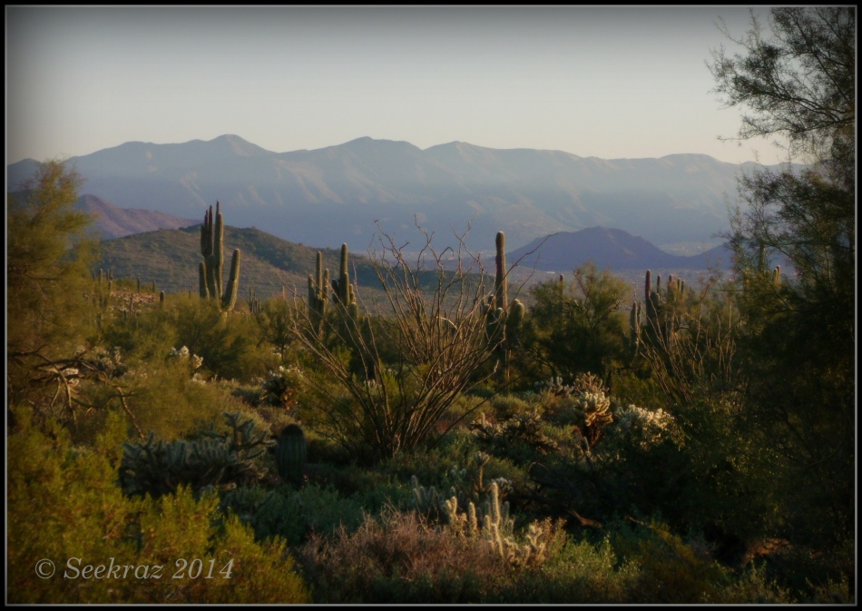 Arizona Sonora Desert landscape from the Desert Hills, north Phoenix, Arizona