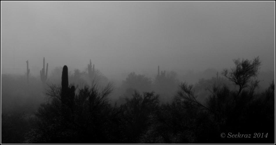 romantic places cactus clouds - photo #8