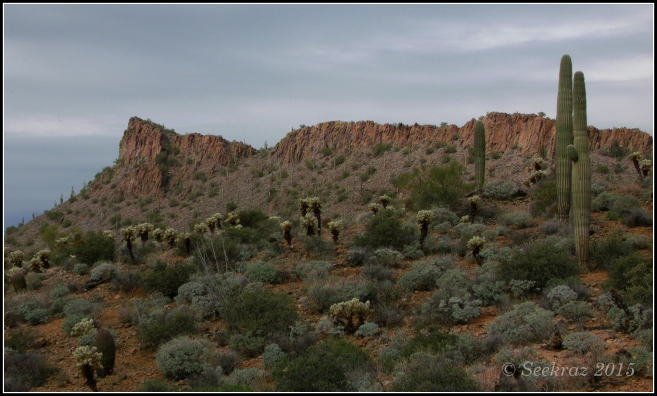 A desert ridge, New River, Arizona