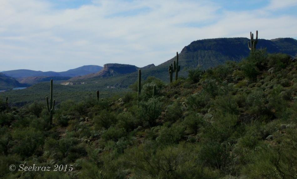 Indian Mesa Vista, Arizona Sonora Desert