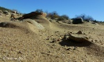Agua Fria River sandybed