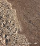 Agua Fria River lines in thesand