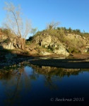 Agua Fria River with full treereflection