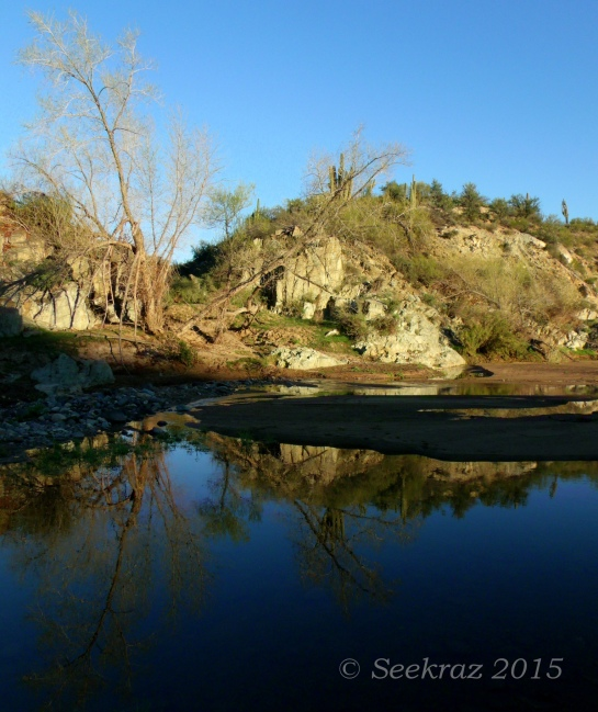 Agua Fria River with full tree reflection