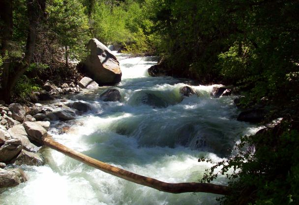 Little Cottonwood Canyon's rushing stream June 15, 2010