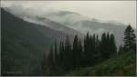 Low clouds in Little CottonwoodCanyon