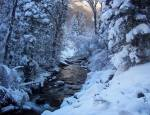 Winter post-card in Little CottonwoodCanyon