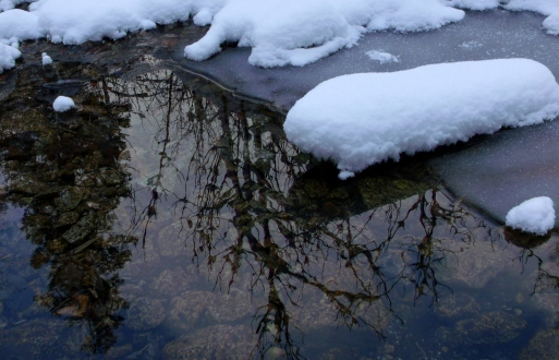Winter reflection in Little Cottonwood Canyon stream