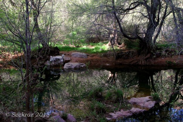 Sycamore Canyon creek with reflections and white rocks