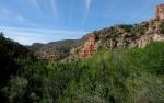 Sycamore Canyon with Springgreens
