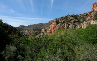 Sycamore Canyon with Spring greens