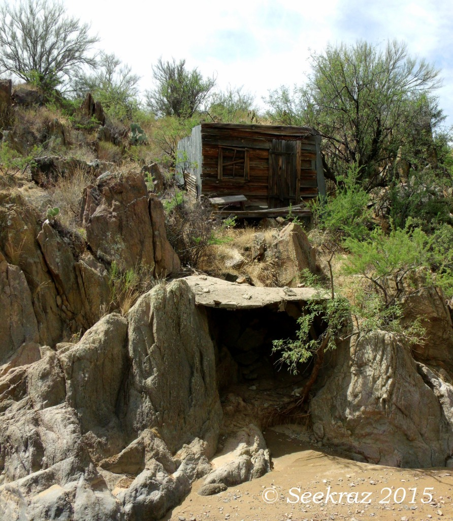 Sheep Gulch Miner's shack with shaft opening