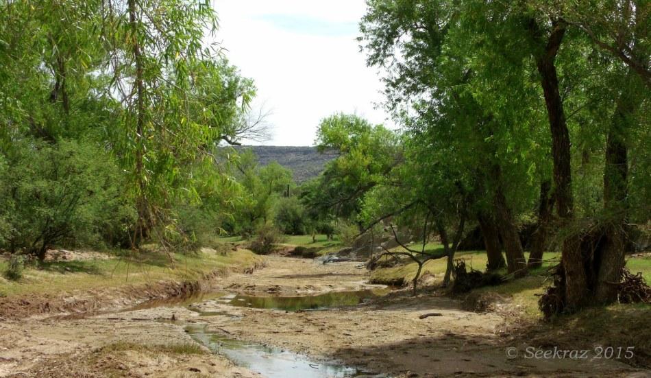 Sheep Gulch streambed 2