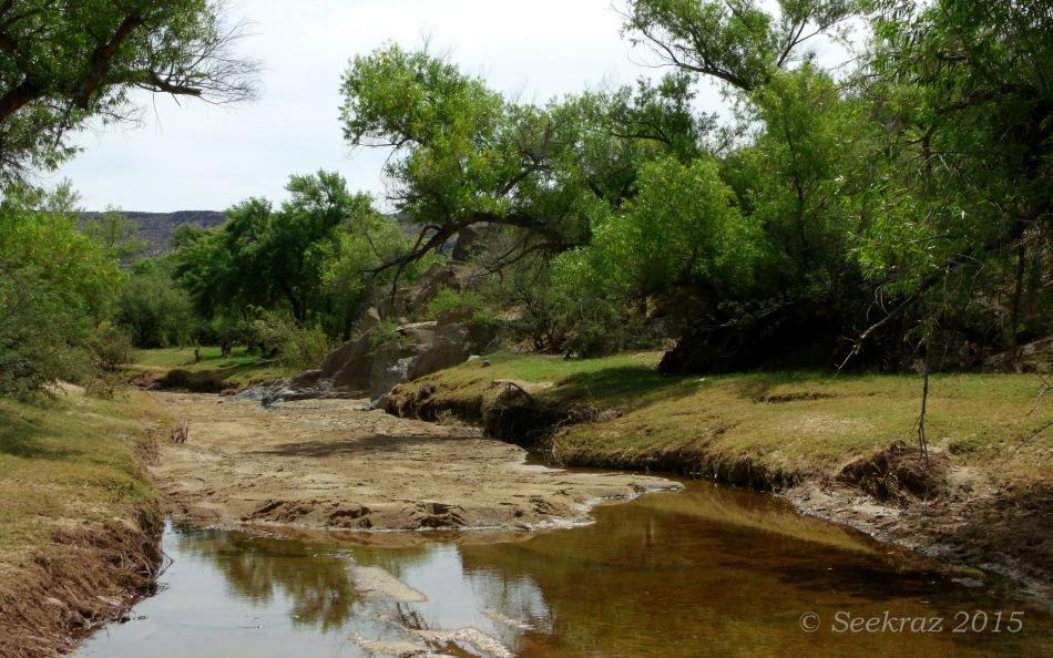 Sheep Gulch streambed 3