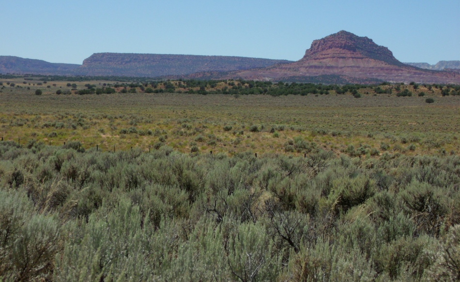 Purple mesa and fields of sage, south and east of Kanab, Utah