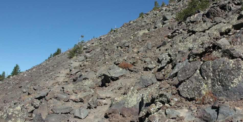 White marker on trail to Humphreys Peak