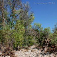 Hiking Cottonwood Creek.......in Arizona