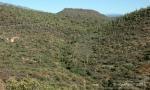 Elevated perspective – desert hillspanorama
