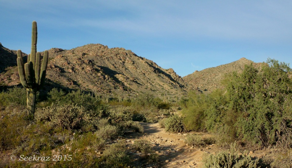 Ford Canyon Trail in the morning at White Tank Mountains
