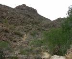 Opposite hillside of Goat Camp Trail in White TankMountains