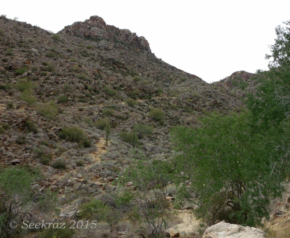 Opposite hillside of Goat Camp Trail in White Tank Mountains