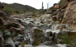 Stream-bed crossing of Goat Camp Trail in White TankMountains