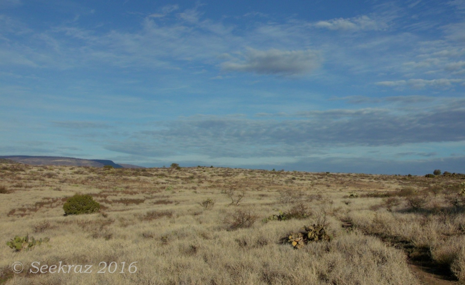 Grasslands and clouds along Drinking Snake segment of Black Canyon Trail