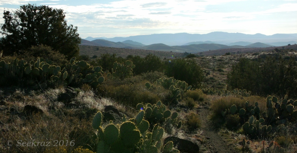 Richly-desert foreground with mountains and clouds along Drinking Snake segment of Black Canyon Trail