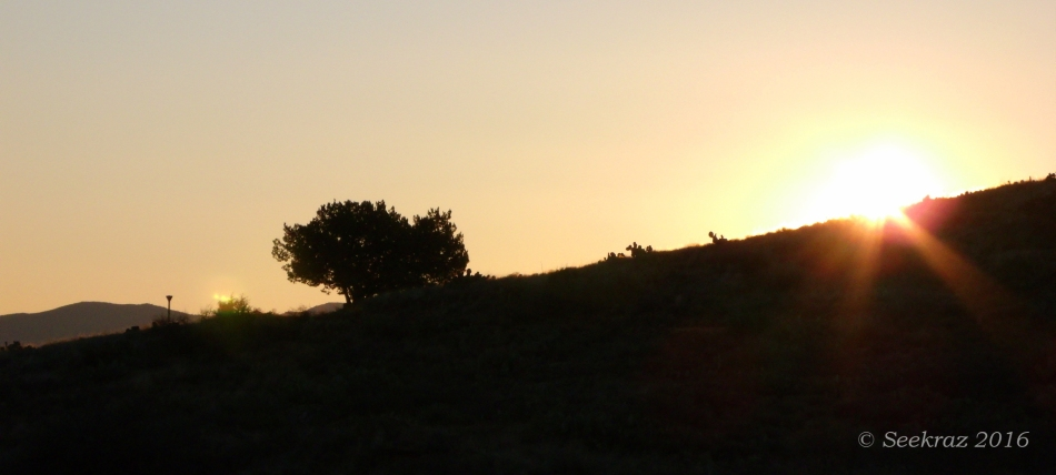 Silhouettes, signpost, and sunrise along the BCT