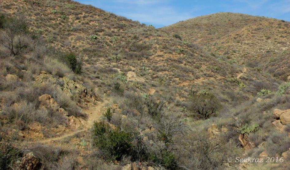 Antelope Creek segment of Black Canyon Trail
