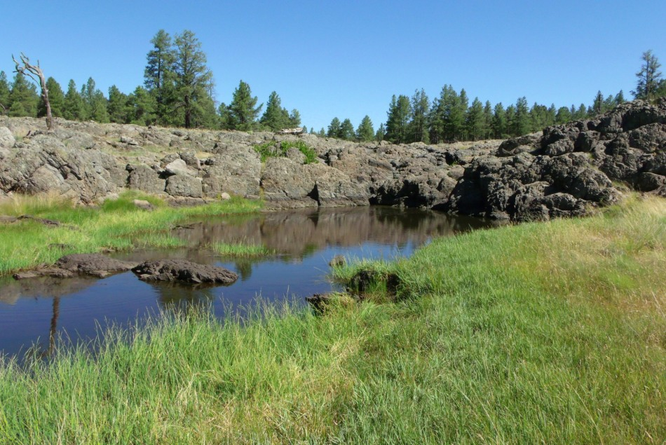 High desert forest pond beneath lava prairie