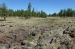 Lava-covered prairie