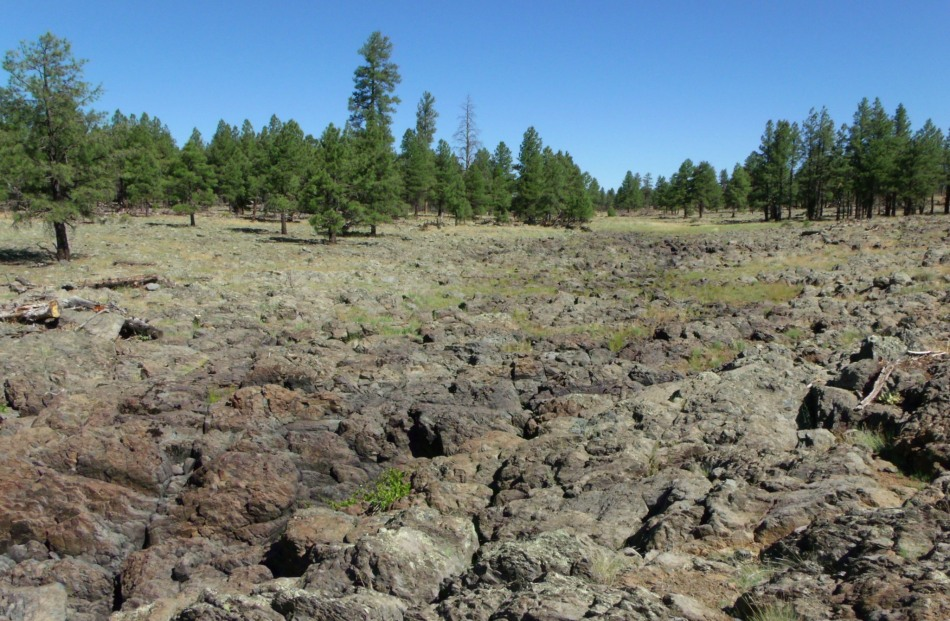 Lava-covered prairie