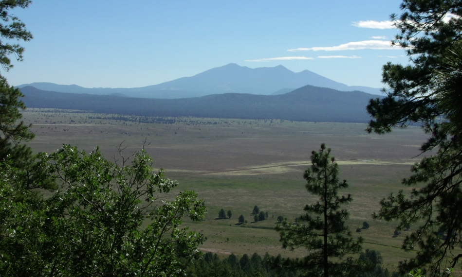 Looking east toward San Francisco Peaks from atop KA Hill