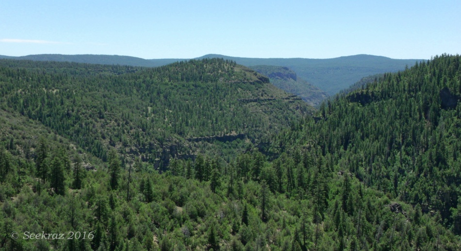 Long view of Sycamore Canyon, Kaibab National Forest