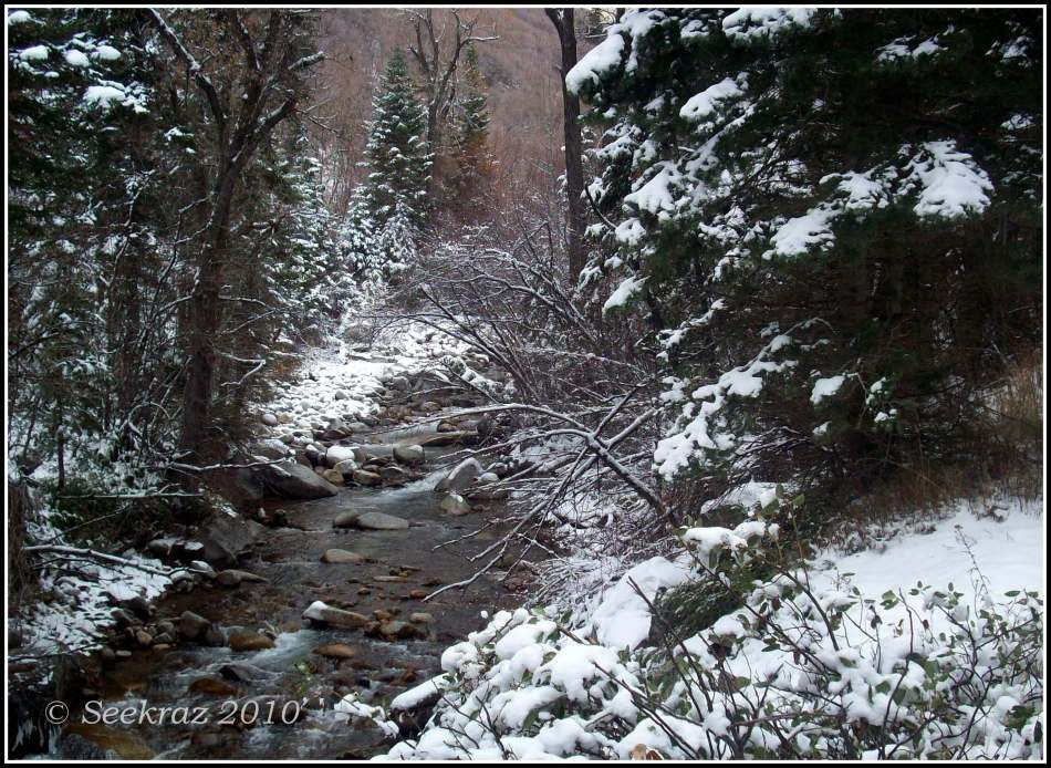 little-cottonwood-creek-11-13-2010