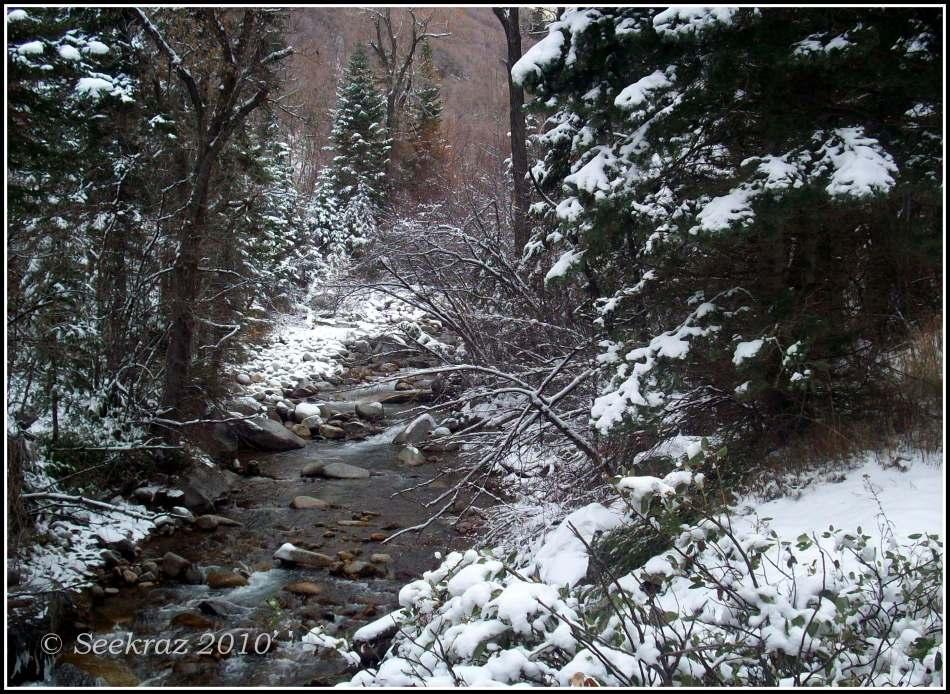 little-cottonwood-creek-11-13-2010