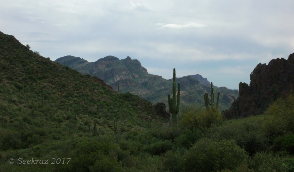 Superstition Mountains - a different kind of desert