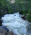 Big Cottonwood Stream